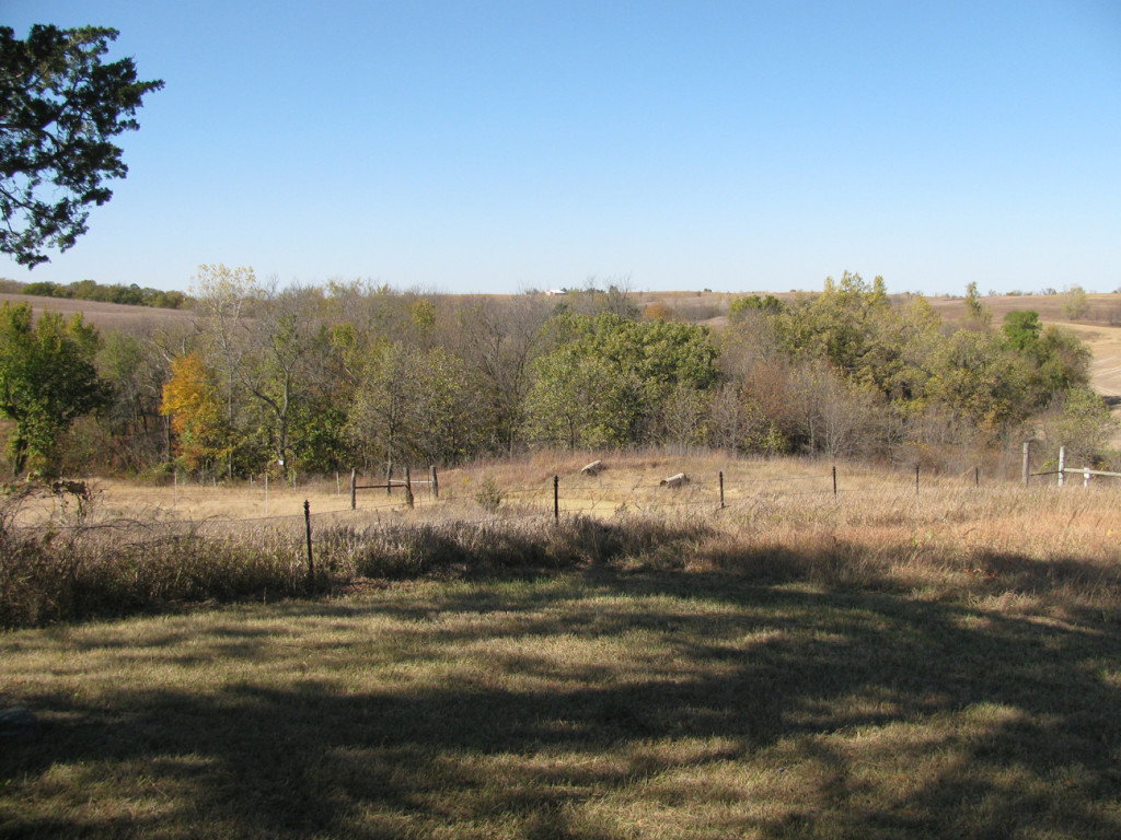 Looking north from the cemetery.  The Anthony Sharp farm begins at the tree line.