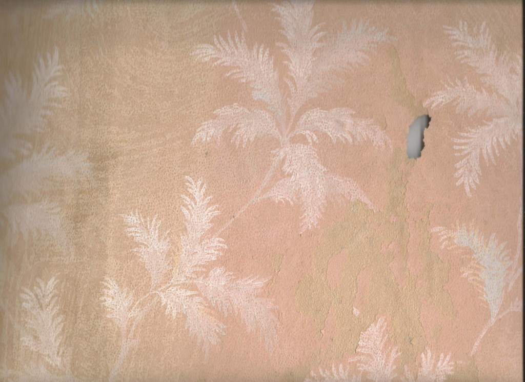 the third front room layer was this peach with white ferns.  Martha Trausch Preissler who lived with her brothers Bert and Charles, may have hung this between 1934 and 1937 when the room was used as a bedroom.